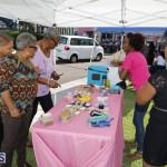 Global Entrepreneurship Week Bermuda Nov 2 2017 (8)