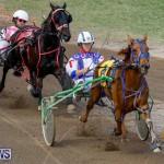 Harness Pony Racing Bermuda, November 13 2017_7432