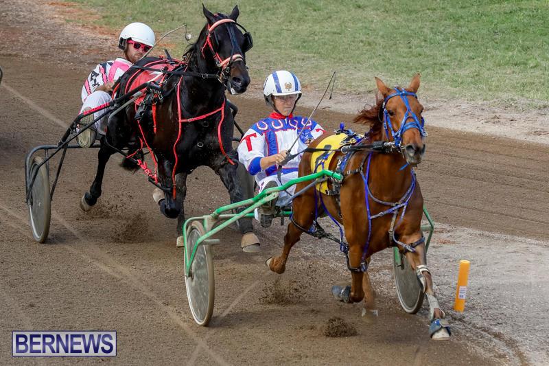 Harness-Pony-Racing-Bermuda-November-13-2017_7432