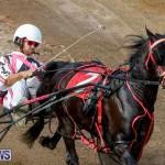 Harness Pony Racing Bermuda, November 13 2017_7436