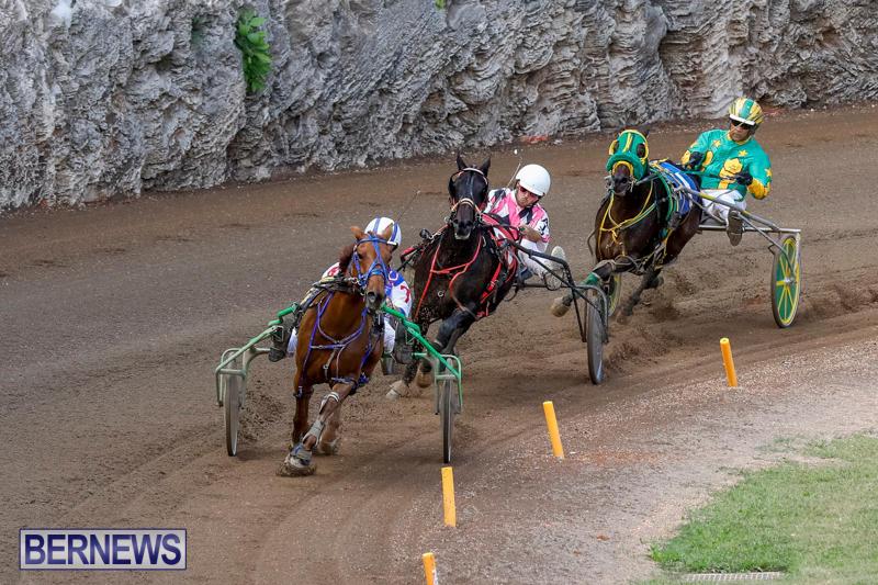 Harness-Pony-Racing-Bermuda-November-13-2017_7441