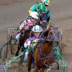 Harness Pony Racing Bermuda, November 13 2017_7443