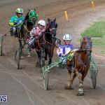 Harness Pony Racing Bermuda, November 13 2017_7445