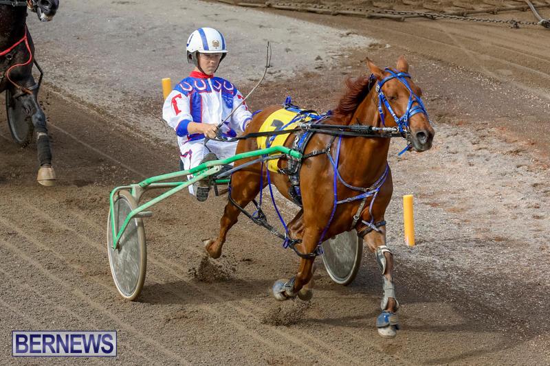 Harness-Pony-Racing-Bermuda-November-13-2017_7450