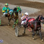 Harness Pony Racing Bermuda, November 13 2017_7451