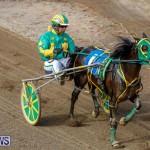 Harness Pony Racing Bermuda, November 13 2017_7453