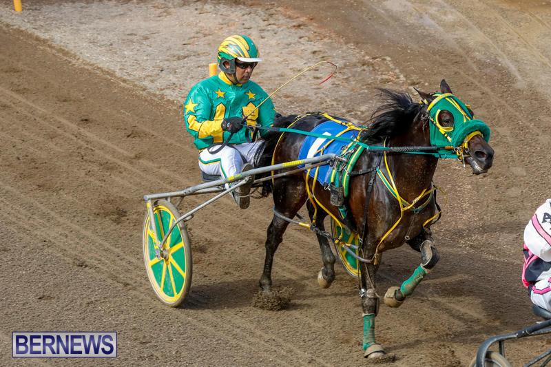 Harness-Pony-Racing-Bermuda-November-13-2017_7453