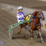 Harness Pony Racing Bermuda, November 13 2017_7465