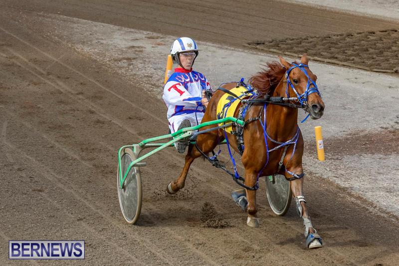 Harness-Pony-Racing-Bermuda-November-13-2017_7465