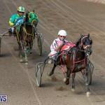 Harness Pony Racing Bermuda, November 13 2017_7467