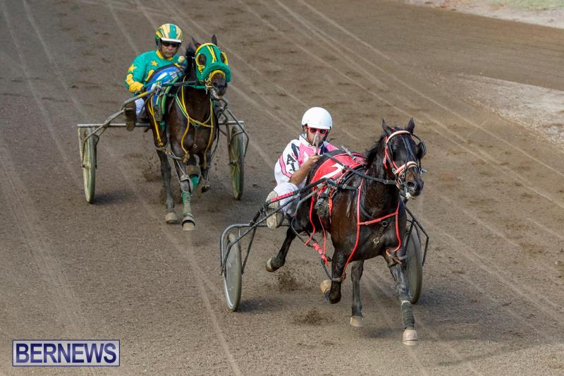 Harness-Pony-Racing-Bermuda-November-13-2017_7467