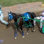 Harness Pony Racing Bermuda, November 13 2017_7482