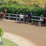 Harness Pony Racing Bermuda, November 13 2017_7488