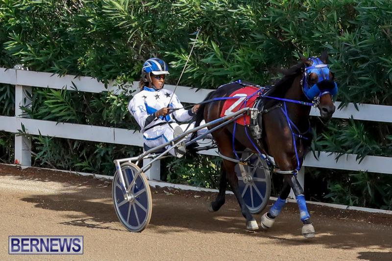 Harness-Pony-Racing-Bermuda-November-13-2017_7489
