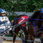 Harness Pony Racing Bermuda, November 13 2017_7493