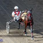 Harness Pony Racing Bermuda, November 13 2017_7503