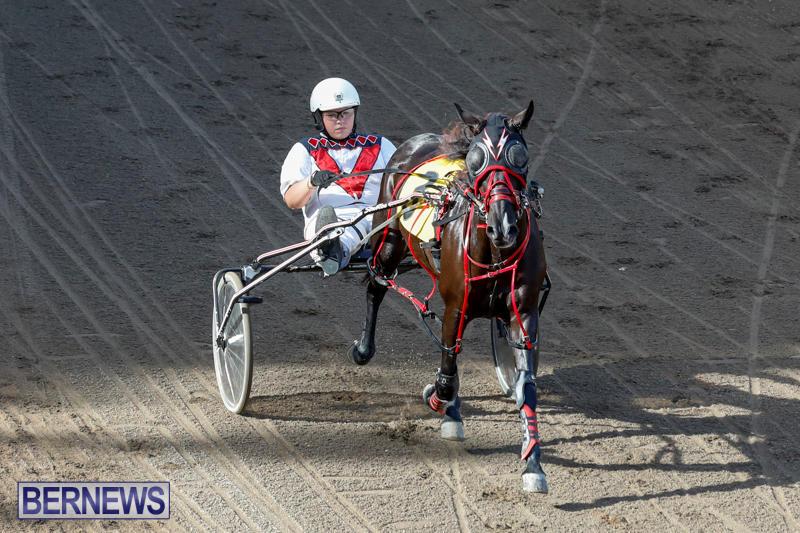 Harness-Pony-Racing-Bermuda-November-13-2017_7503