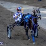 Harness Pony Racing Bermuda, November 13 2017_7506
