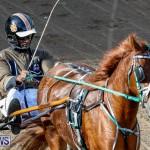 Harness Pony Racing Bermuda, November 13 2017_7510
