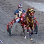 Harness Pony Racing Bermuda, November 13 2017_7517