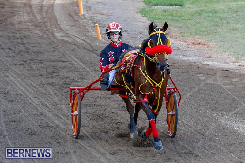Harness-Pony-Racing-Bermuda-November-13-2017_7525
