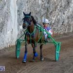 Harness Pony Racing Bermuda, November 13 2017_7545