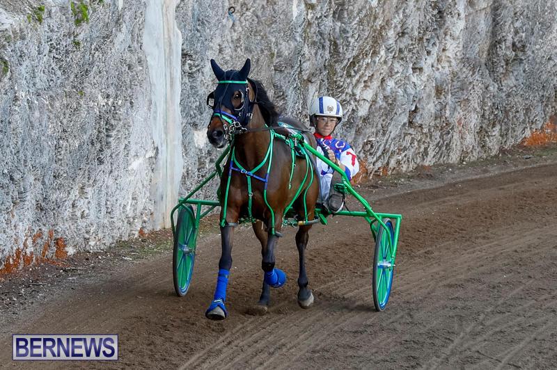 Harness-Pony-Racing-Bermuda-November-13-2017_7545