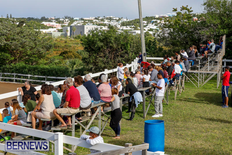 Harness-Pony-Racing-Bermuda-November-13-2017_7592