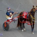Harness Pony Racing Bermuda, November 13 2017_7596