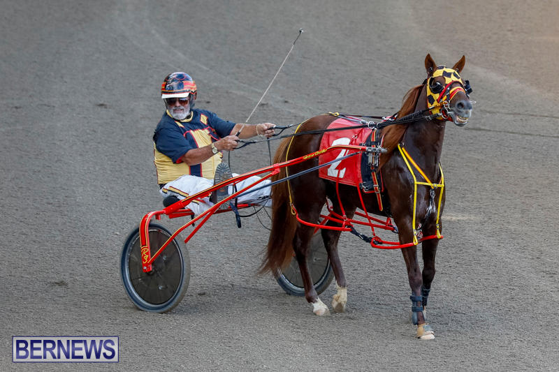Harness-Pony-Racing-Bermuda-November-13-2017_7596