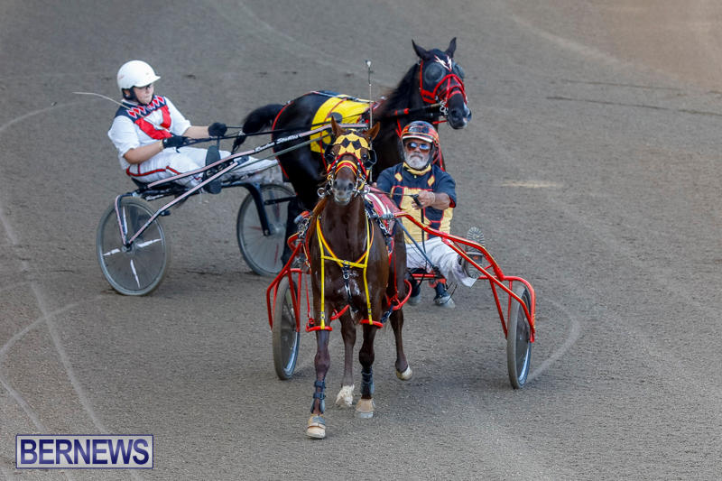 Harness-Pony-Racing-Bermuda-November-13-2017_7599