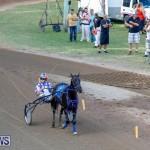 Harness Pony Racing Bermuda, November 13 2017_7602