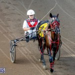 Harness Pony Racing Bermuda, November 13 2017_7608