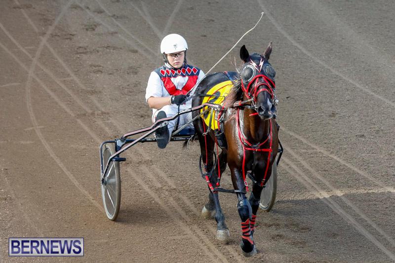 Harness-Pony-Racing-Bermuda-November-13-2017_7608