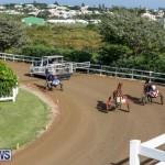 Harness Pony Racing Bermuda, November 13 2017_7611