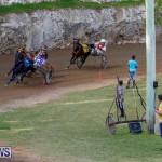 Harness Pony Racing Bermuda, November 13 2017_7627