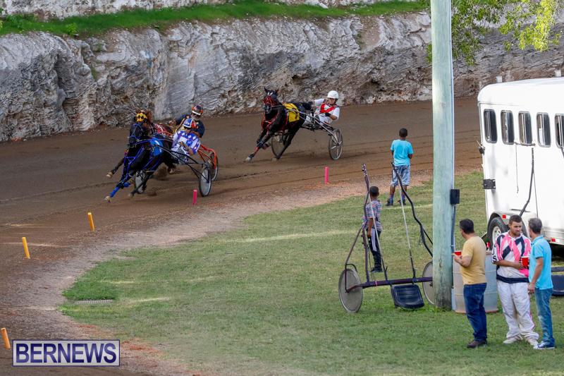 Harness-Pony-Racing-Bermuda-November-13-2017_7627
