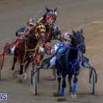 Harness Pony Racing Bermuda, November 13 2017_7633