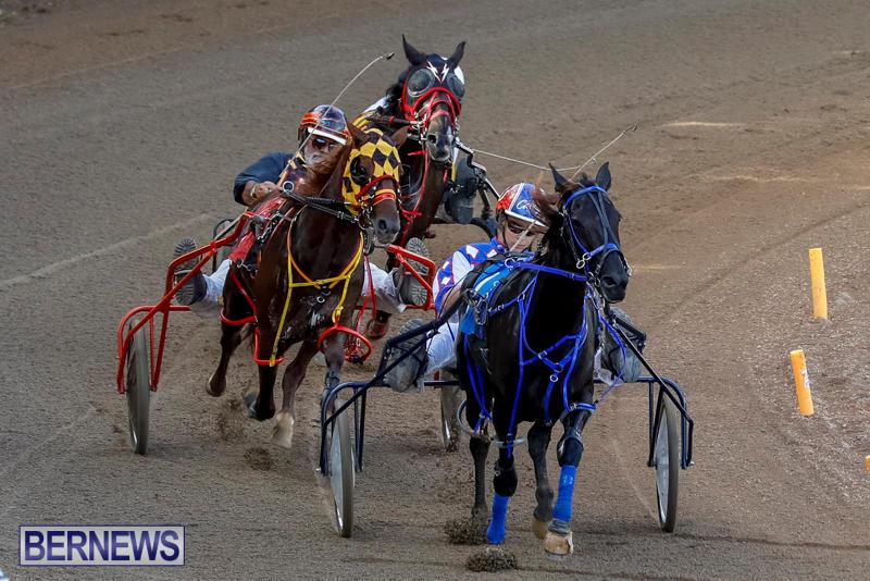 Harness-Pony-Racing-Bermuda-November-13-2017_7633