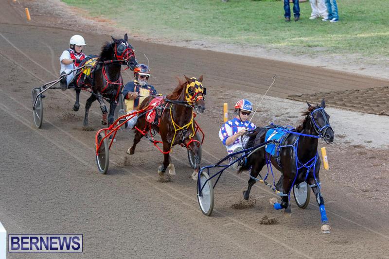 Harness-Pony-Racing-Bermuda-November-13-2017_7639