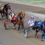 Harness Pony Racing Bermuda, November 13 2017_7640