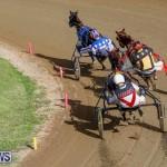 Harness Pony Racing Bermuda, November 13 2017_7645
