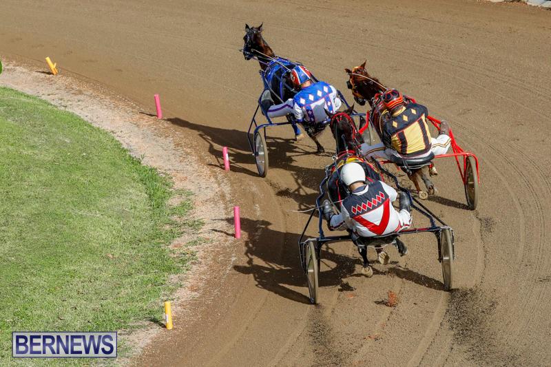 Harness-Pony-Racing-Bermuda-November-13-2017_7645