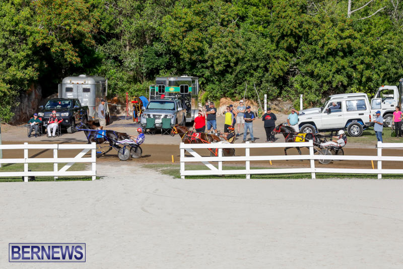 Harness-Pony-Racing-Bermuda-November-13-2017_7650