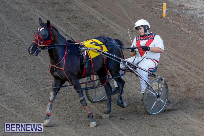 Harness-Pony-Racing-Bermuda-November-13-2017_7689