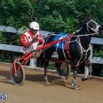Harness Pony Racing Bermuda, November 13 2017_7697