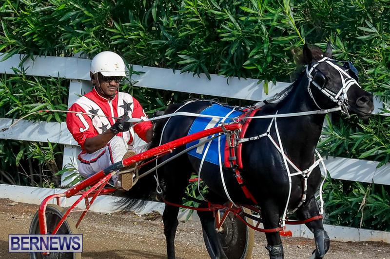 Harness-Pony-Racing-Bermuda-November-13-2017_7701
