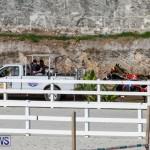 Harness Pony Racing Bermuda, November 13 2017_7716