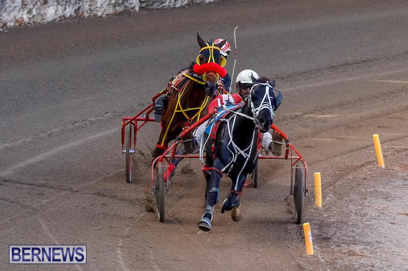 Harness-Pony-Racing-Bermuda-November-13-2017_7728