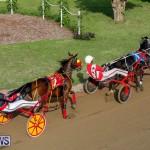 Harness Pony Racing Bermuda, November 13 2017_7739